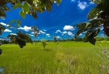 For Sale Land in Warin Chamrap, Ubon Ratchathani, Thailand