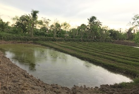 For Sale Land 2,062 sqm in Bang Phli, Samut Prakan, Thailand