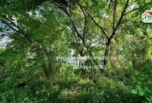 For Sale Land 994.4 sqm in Prawet, Bangkok, Thailand