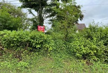 For Sale Land 196 sqm in Mueang Udon Thani, Udon Thani, Thailand