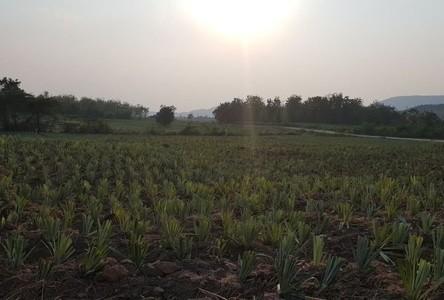 For Sale Land 608,940 sqm in Chom Bueng, Ratchaburi, Thailand