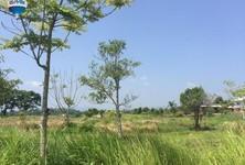 For Sale Land in Mae Chan, Chiang Rai, Thailand