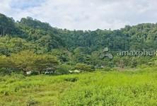 For Sale Land 6,400 sqm in Kathu, Phuket, Thailand