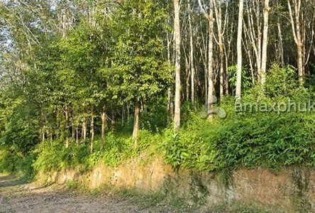 For Sale Land 13,733 sqm in Thalang, Phuket, Thailand