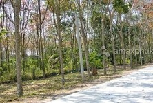 For Sale Land 6,116 sqm in Thalang, Phuket, Thailand