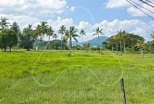 For Sale Land 160,000 sqm in Mueang Phuket, Phuket, Thailand