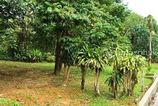 For Sale Land 7,160 sqm in Mueang Phuket, Phuket, Thailand