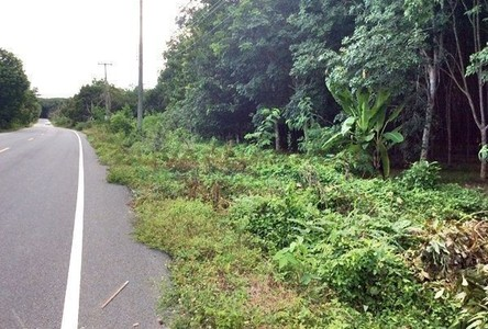 For Sale Land 90 sqm in Mueang Rayong, Rayong, Thailand