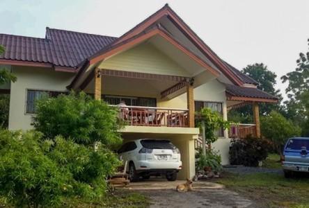 For Sale Land 3,100 sqm in Pak Chong, Nakhon Ratchasima, Thailand