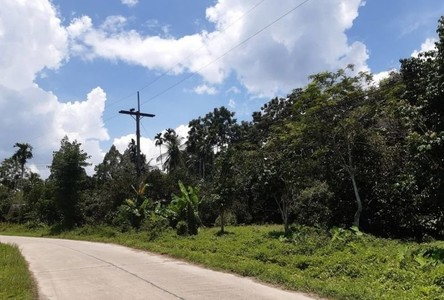 For Sale Land 10,716 sqm in Mueang Nakhon Si Thammarat, Nakhon Si Thammarat, Thailand