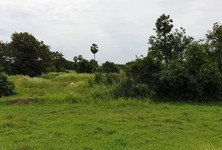 For Sale Land 10,276 sqm in Mueang Nakhon Si Thammarat, Nakhon Si Thammarat, Thailand