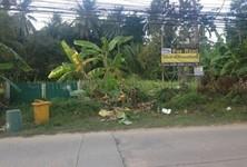For Rent Land 2,000 sqm in Ko Pha-ngan, Surat Thani, Thailand
