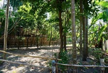 For Rent Land 696 sqm in Mueang Chiang Mai, Chiang Mai, Thailand