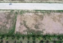 ขาย ที่ดิน 795 ตรม. เมืองนครศรีธรรมราช นครศรีธรรมราช