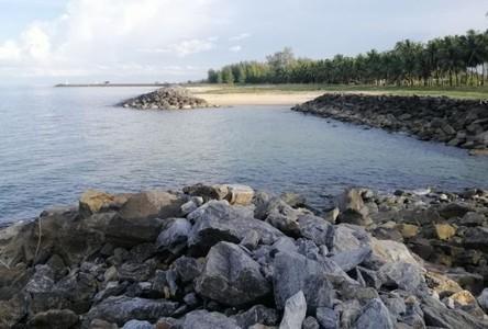 For Sale Land 6,548 sqm in Sichon, Nakhon Si Thammarat, Thailand
