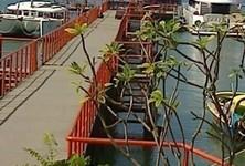 ขาย พื้นที่ค้าปลีก 1,100 ตรม. เกาะสมุย สุราษฎร์ธานี