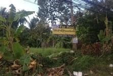 For Rent Land 2,004 sqm in Ko Pha-ngan, Surat Thani, Thailand