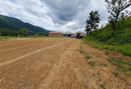 For Sale Land 2,308 sqm in Pak Chong, Nakhon Ratchasima, Thailand