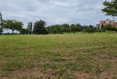 For Sale Land 2,020 sqm in Pak Chong, Nakhon Ratchasima, Thailand