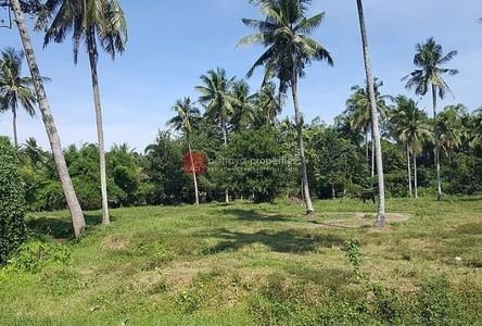 For Sale Land 23,128 sqm in Bang Lamung, Chonburi, Thailand