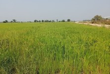 For Sale Land 64,000 sqm in Bang Nam Priao, Chachoengsao, Thailand