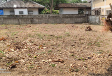 For Sale or Rent Land 1 ngaan in Mueang Chiang Mai, Chiang Mai, Thailand