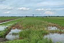 For Sale Land 7,996 sqm in Khlong Luang, Pathum Thani, Thailand