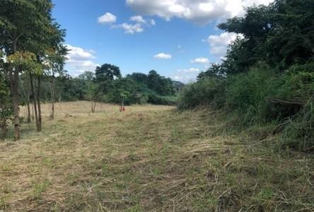 For Rent Land 42,948 sqm in Pak Chong, Nakhon Ratchasima, Thailand