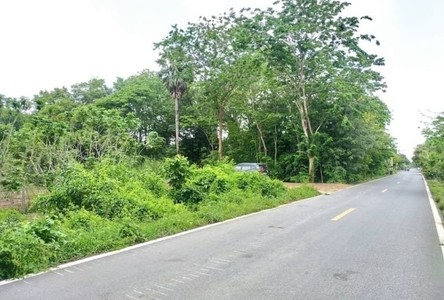 For Sale Land 32,000 sqm in Khlong Luang, Pathum Thani, Thailand