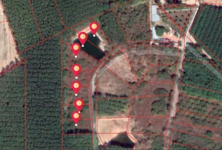 For Sale Land 10,052 sqm in Klaeng, Rayong, Thailand
