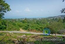 For Sale Land 4,200 sqm in Ko Samui, Surat Thani, Thailand