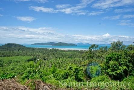 For Sale Land 9,948 sqm in Ko Samui, Surat Thani, Thailand