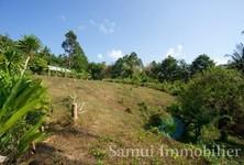 For Sale Land 1,000 sqm in Ko Samui, Surat Thani, Thailand