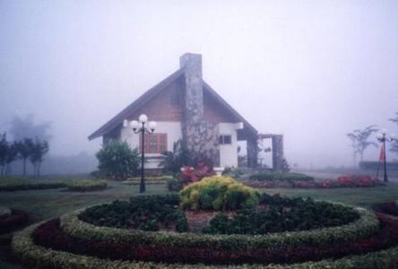 For Sale Land 612,800 sqm in Khun Tan, Chiang Rai, Thailand