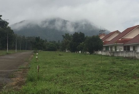 For Sale Land 82,516 sqm in Mueang Lamphun, Lamphun, Thailand