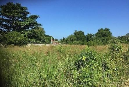 For Sale Land 424 sqm in Sattahip, Chonburi, Thailand