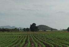For Sale Land in U Thong, Suphan Buri, Thailand