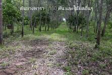 For Sale Land 24,000 sqm in Pong Nam Ron, Chanthaburi, Thailand
