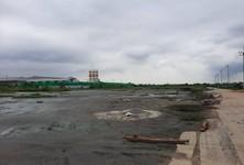 ขาย ที่ดิน เมืองสมุทรสาคร สมุทรสาคร