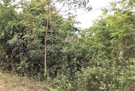 For Sale Land 404 sqm in Tha Yang, Phetchaburi, Thailand