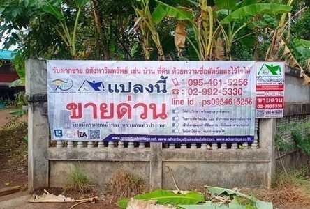 For Sale Land 141.6 sqm in Mueang Udon Thani, Udon Thani, Thailand
