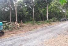 For Sale Land 4,395 sqm in Mueang Krabi, Krabi, Thailand