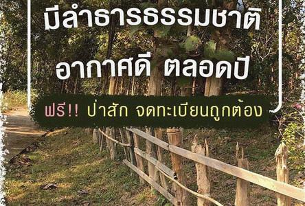 For Sale Land 74-3-35 rai in Mueang Pan, Lampang, Thailand