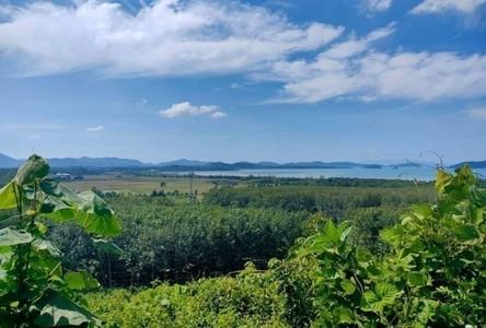 For Sale Land 73,600 sqm in Ko Lanta, Krabi, Thailand