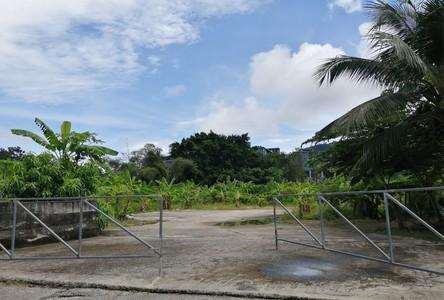For Sale Land 5,000 sqm in Kathu, Phuket, Thailand