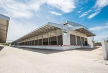 For Rent Warehouse 1,125 sqm in Bang Bo, Samut Prakan, Thailand