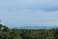 For Sale Land 800 sqm in Ko Pha-ngan, Surat Thani, Thailand
