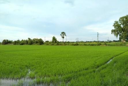 For Sale Land 62,400 sqm in Nong Chok, Bangkok, Thailand