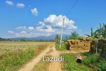 For Sale Land 7,840 sqm in Wiang Chai, Chiang Rai, Thailand