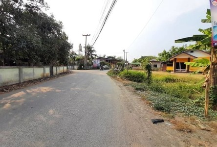 For Sale Land 724 sqm in Doi Saket, Chiang Mai, Thailand